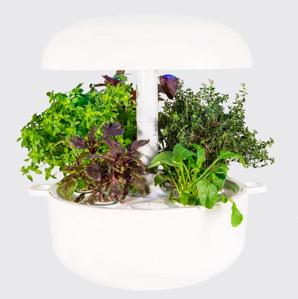 Plantui Smart Garden 6