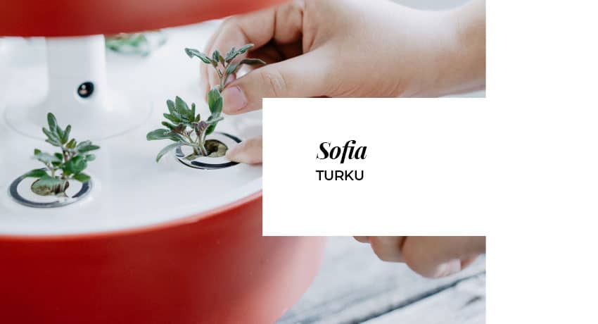 Sofia from Turku is a seasoned Plantui user