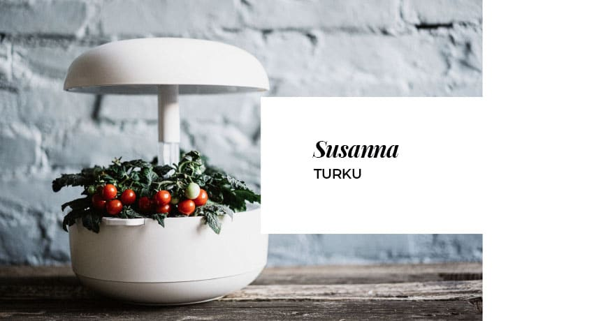 Susannan Plantui-sadosta riittää marsuillekin